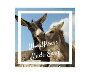 Over ezels en projecten en de vele wegen naar Rome